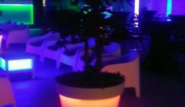 Loungehuren.be - XXL Verlichte bloempotten
